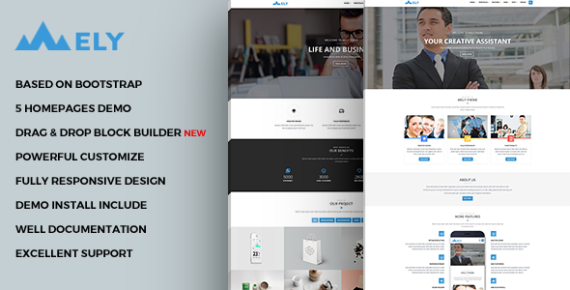 Mely – Responsive Business Drupal Theme_5f51965cc181c.png